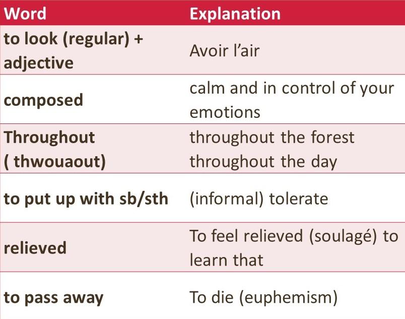 liste de vocabulaire d'anglais optimisée